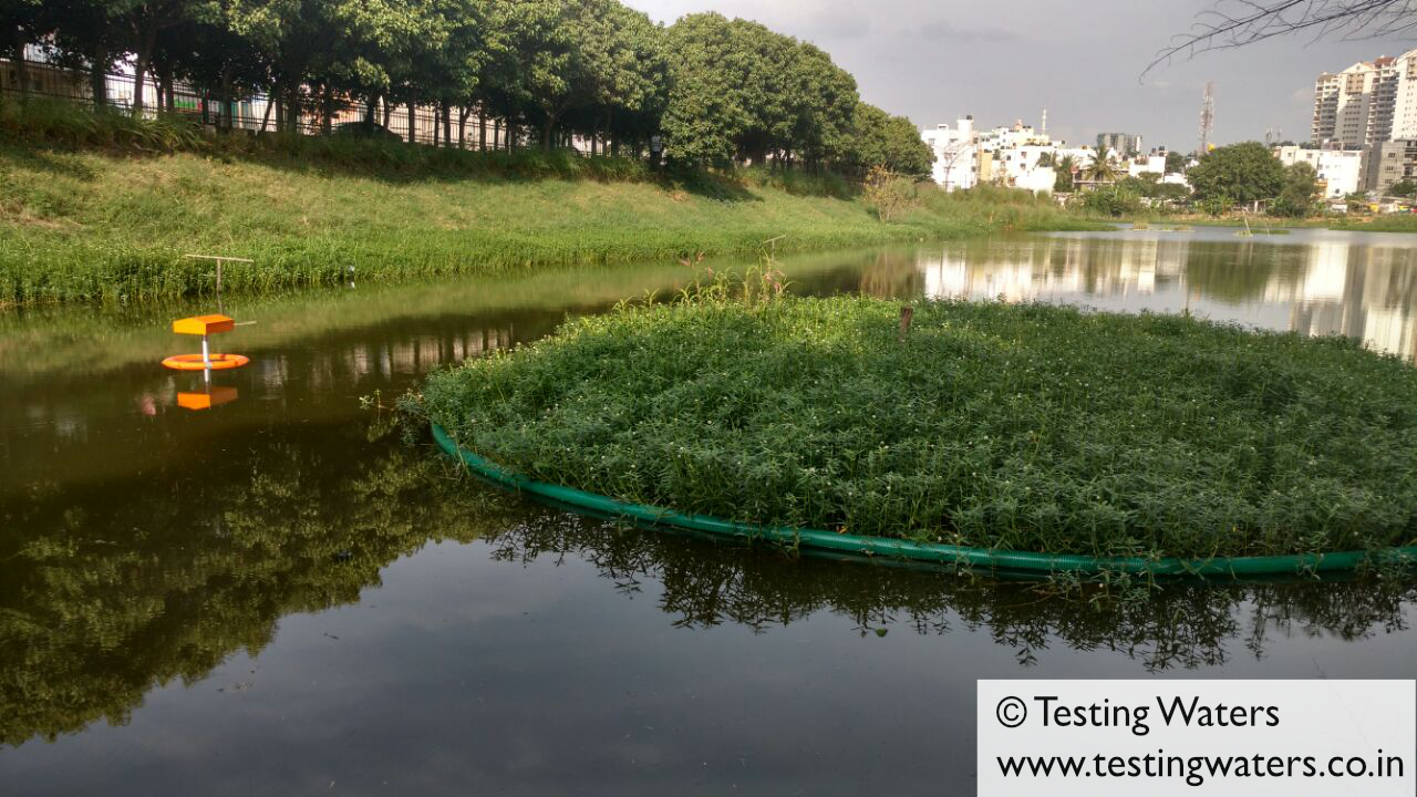 Testing the system in Putenhalli Lake